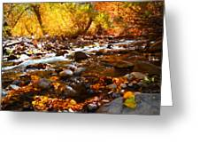 Fall Flow At Mcgee Creek Greeting Card