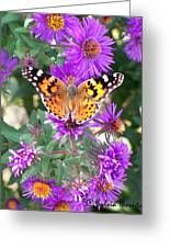 Fall Flutterby Greeting Card