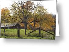 Fall Foilage In Country Greeting Card