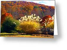 Fall Foilage In The Mountains Greeting Card