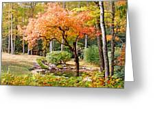 Fall Folage And Pond 2 Greeting Card