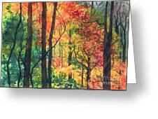 Fall Foliage Greeting Card by Barbara Jewell