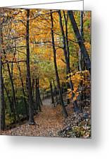 Fall Foliage Colors 03 Greeting Card