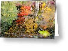 Fall Foliage Reflection 2 Greeting Card
