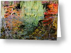 Fall Foliage Reflection 3 Greeting Card