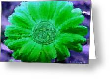Fall For Me Purple Green Greeting Card