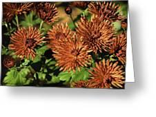 Fall Garden Flowers Greeting Card