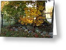 Fall Gate Greeting Card