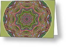 Fall Grass Mandala Greeting Card