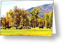 Fall Grazing Greeting Card