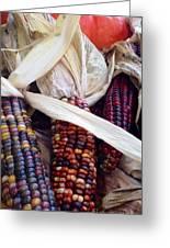 Fall Harvest Corn Greeting Card