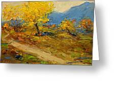 Fall In Albania Greeting Card