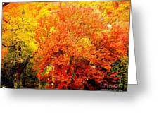 Fall In Full Bloom Greeting Card