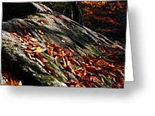 Fall In Gyeryongsan Greeting Card by Brad Brizek