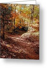 Fall In Johnston County Greeting Card