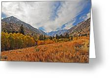 Fall In Lundy Canyon Greeting Card