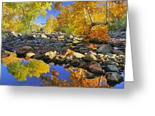 Fall In Oak Creek  Greeting Card