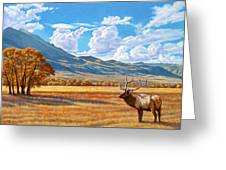 Fall In Paradise Valley Greeting Card