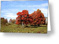 Fall In The Pastures Greeting Card