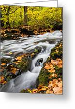 Fall In The Poconos Greeting Card