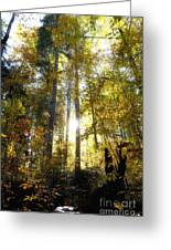Fall In The Woods Close To The Elmau Greeting Card