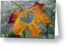 Fall Ing In Love Greeting Card