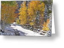 Fall Into Beartrap Meadow - Casper Mountain - Casper Wyoming Greeting Card