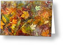 Fall Greeting Card by Katie Black