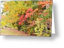 Fall Landscape 3 Greeting Card