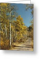 Fall Lane Greeting Card