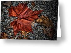 Fall Leaf Greeting Card