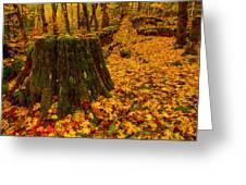 Fall Leaves Mosaic Greeting Card by Dan Mihai