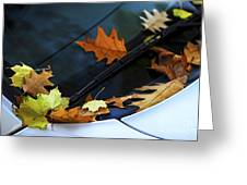 Fall Leaves On A Car Greeting Card