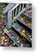 Fall Leaves On Steps Greeting Card