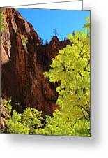 Fall Light From Zion Greeting Card