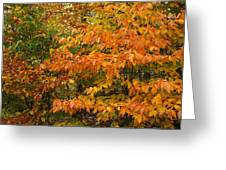 Fall Mix Greeting Card