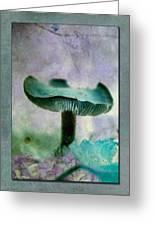 Fall Mushroom 18 Greeting Card