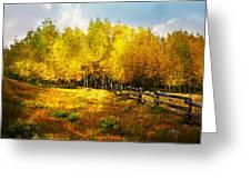 Fall Near Lake City Greeting Card