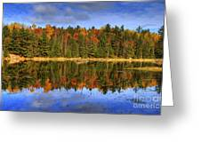 Fall.. Greeting Card