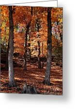 Fall On A Stump Greeting Card