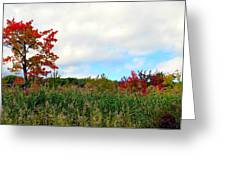 Fall On Fire Greeting Card