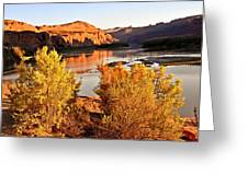 Fall On The Colorado Greeting Card