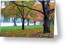 fall on the Potomac River Greeting Card