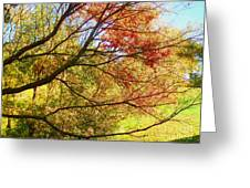 Fall Outstretched Greeting Card