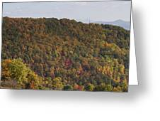 Fall Palette Greeting Card