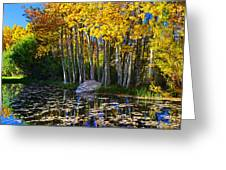 Fall Pond In Mammoth Greeting Card