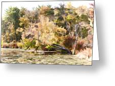 Fall Pond Greeting Card