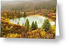Fall Rain On Wilderness Lake Yukon T Canada Greeting Card