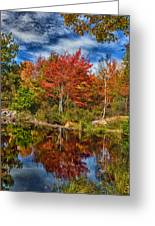Fall Reflections In Maine Img 6312 Greeting Card