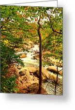 Fall River Running Greeting Card